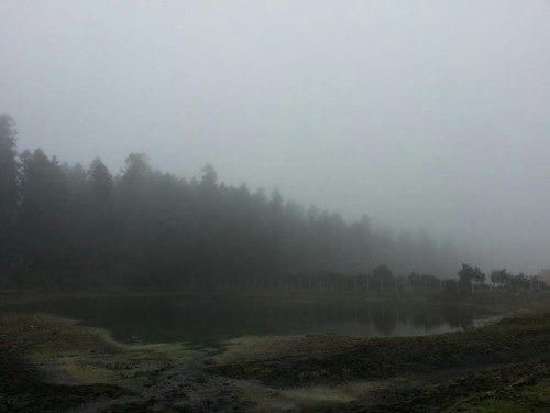 terreno en venta precioso bosque con amenidades, terrenos en facilidades