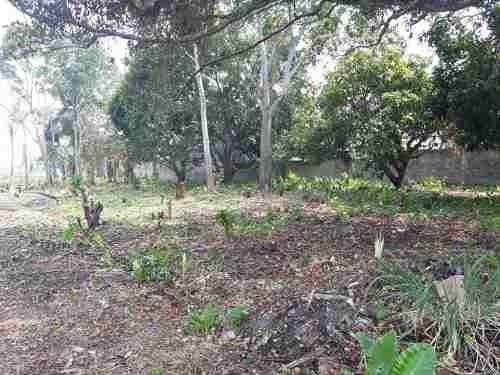 terreno en venta rancheria buena vista 2da. seccion
