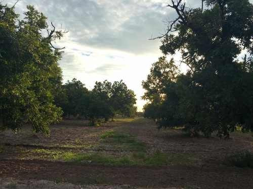 terreno en venta rancho la barranca