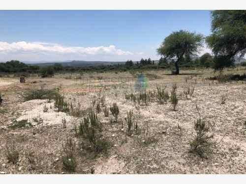 terreno en venta rancho los labradores