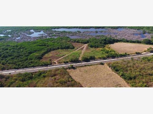 terreno en venta rancho macahuite
