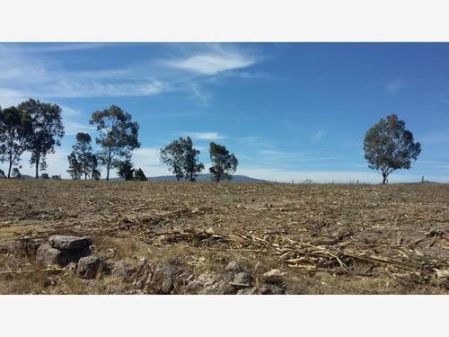 terreno en venta rancho nuevo