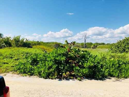 terreno en venta rancho o rancheria mahahual