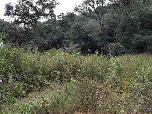 terreno en venta rancho san juan