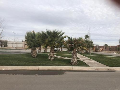 terreno en venta residencial hacienda del rosario