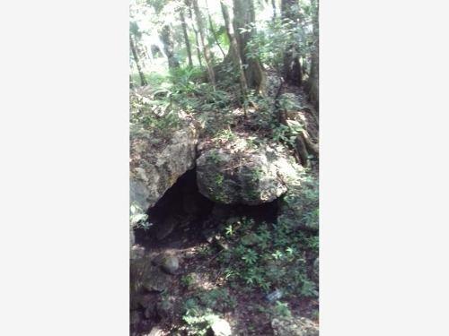 terreno en venta ruta de los cenotes