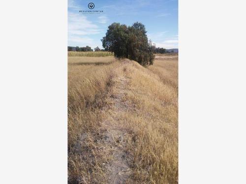 terreno en venta san agustín tlaxiaca