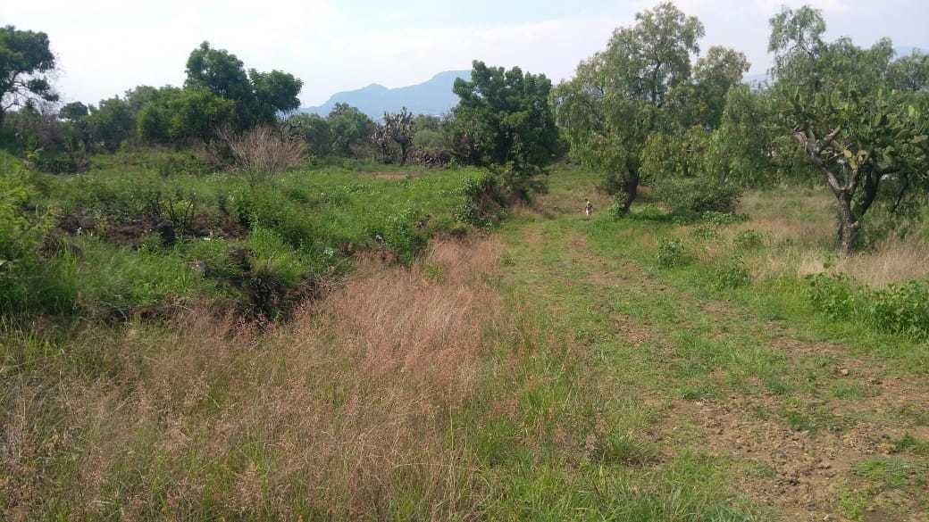 terreno en venta san juan ixtayopan tierra blanca tláhuac