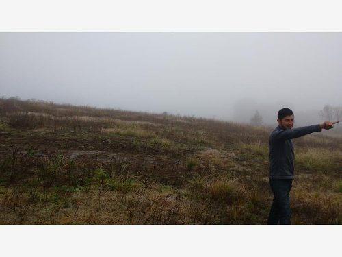 terreno en venta singuilucan
