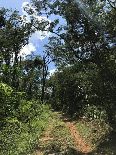 terreno en venta sotuta, yucatán