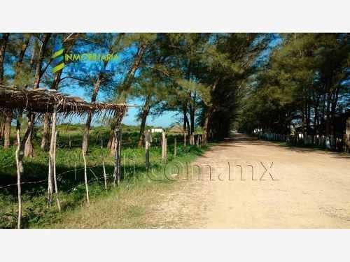 terreno en venta tamiahua