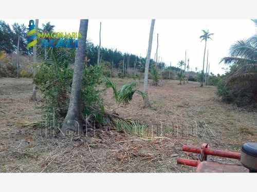 terreno en venta tampamachoco