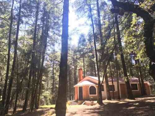 terreno en venta ¿te gusta el bosque y la naturaleza? el mejor lugar a tu alcance a crédito