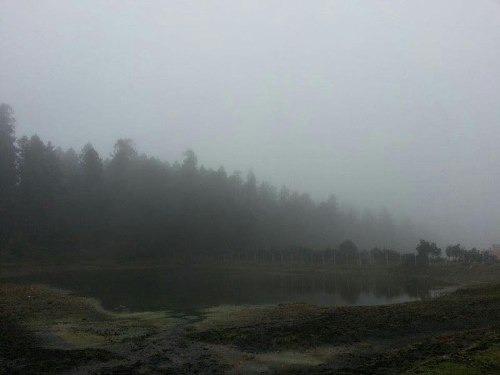 terreno en venta terreno dentro del bosque, en fracc privado. damos crédito
