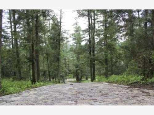 terreno en venta terrenos campestres en el bosque