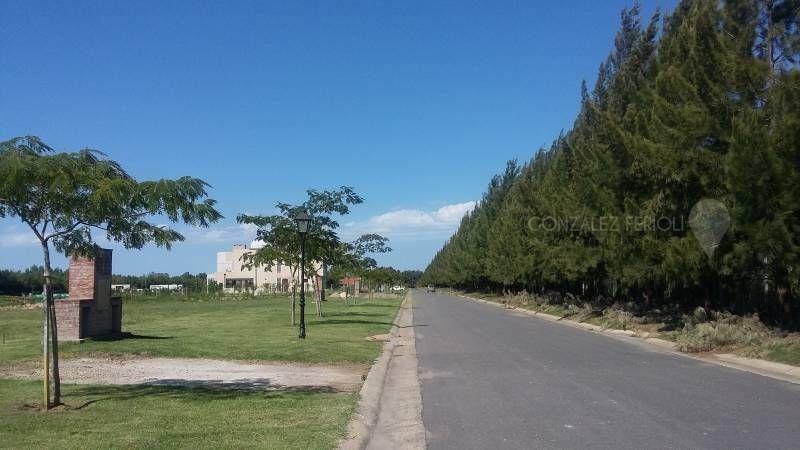 terreno  en venta ubicado en san juan, villanueva