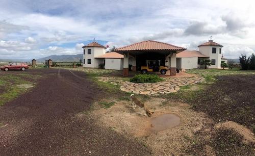 terreno en venta valle de guadalupe