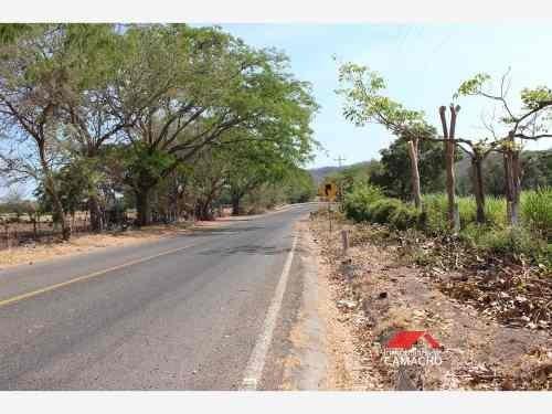 terreno en venta venta 2.5 hectareas de riego, frente carretera la caja el remate, comala colima