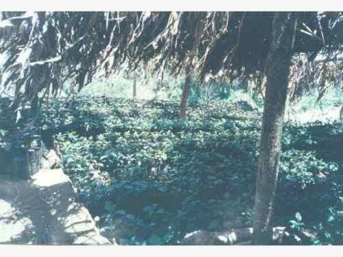 terreno en venta villaflores centro