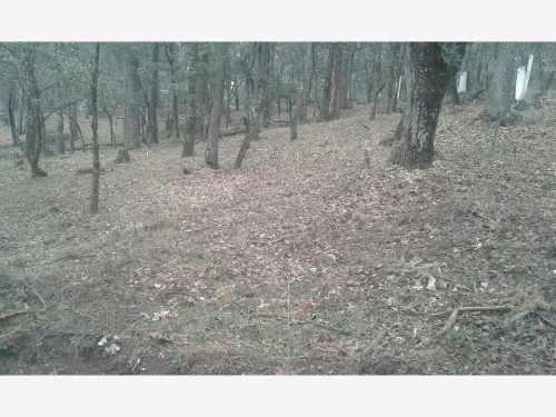 terreno en venta vive en bonito bosque, damos facilidades de pago