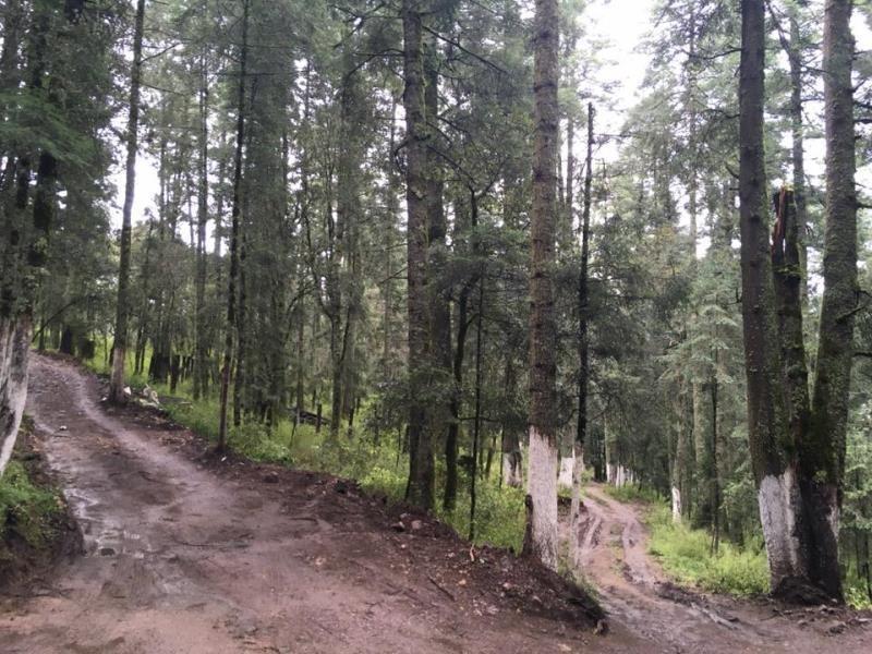 terreno en venta vive en bosque de real del monte, hermosos paisajes