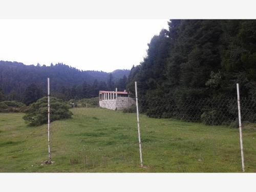 terreno en venta zona boscosa, ideales para construir tu cabaña de descanso