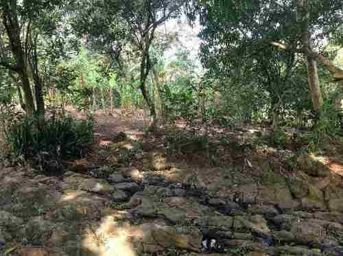 terreno en vercruz