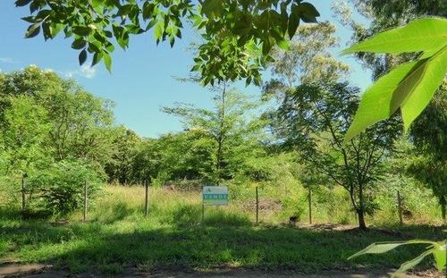 terreno en villa ciudad parque los reartes