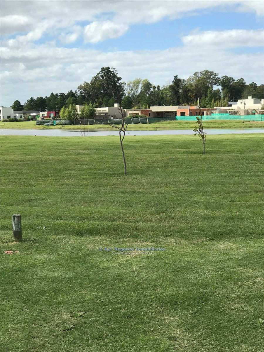 terreno en viñedos de la tahona al lago