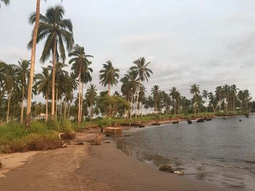 terreno en zona de playa en venta en teacapán, escuinapa, sinaloa