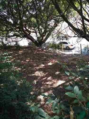 terreno en zona fresca con camaras de seguridad