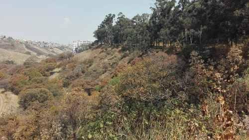 terreno entre bosque real y lomas country club huixquilucan