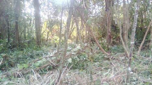 terreno escriturado com 250 m² em itanhaém-sp - ref 4458-p