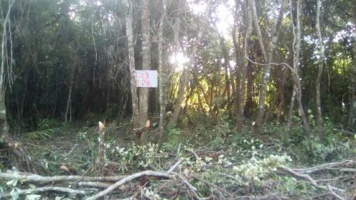 terreno escriturado em itanhaém, 250 m² - ref 4458-p