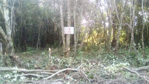 terreno escriturado em itanhaém-sp, 250 m² - ref 4458-p