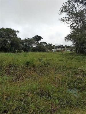 terreno escriturado no gaivota, em itanhaém - ref 4509