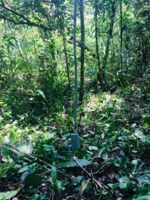 terreno escriturado no jardim regina - itanhaém 6507   p.c.x