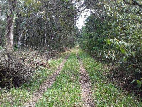terreno escriturado para formar chacara em itanhaem sp