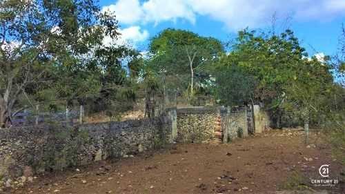 terreno  espita yucatan, 200 has.  rancho ganadero, proyecto agricola o forestal