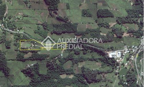 terreno - faria lemos - ref: 175023 - v-175023