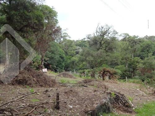terreno - floresta - ref: 217250 - v-217250