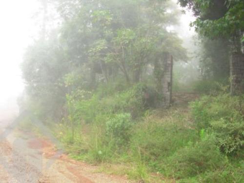 terreno - forqueta - ref: 120054 - v-120054