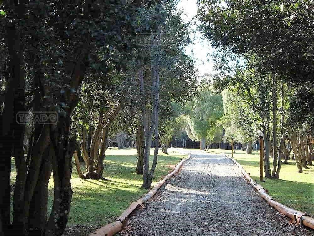 terreno fraccion  en venta ubicado en villa lago mascardi, bariloche