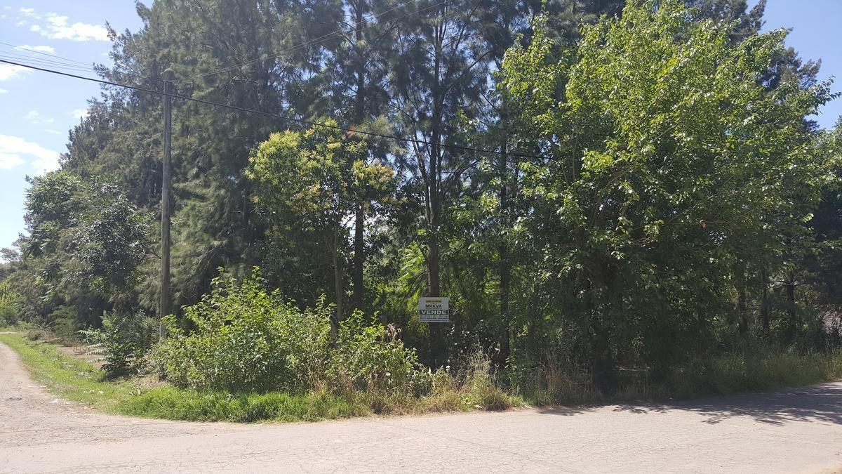 terreno - francisco alvarez