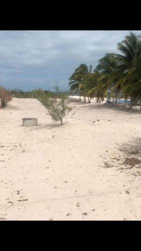 terreno frente al mar, en sancrisanto.