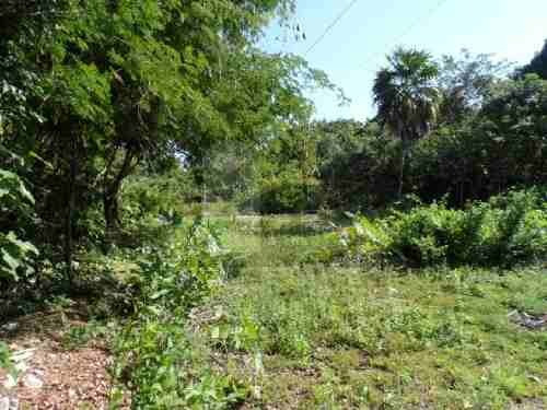 terreno habitacional en venta en la guadalupana, solidaridad, quintana roo