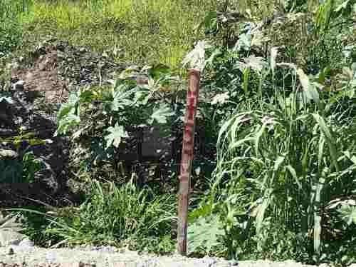 terreno habitacional en venta en matanchén (la aguada), san blas, nayarit