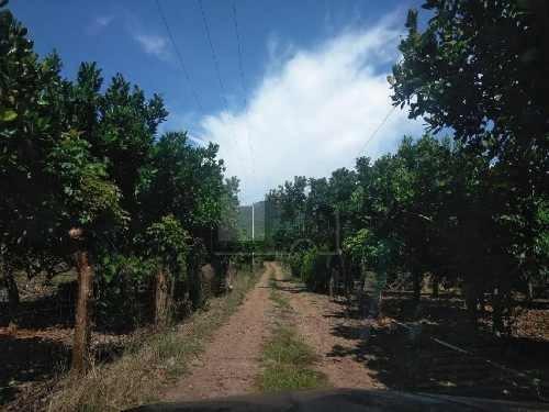 terreno habitacional en venta en santa cruz de miramar, san blas, nayarit