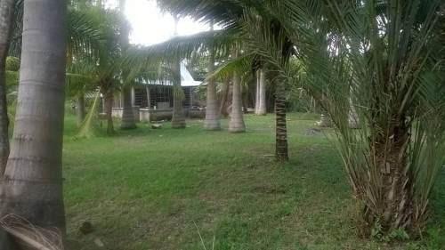 terreno habitacional ubicado en el poblado de juan sarabia