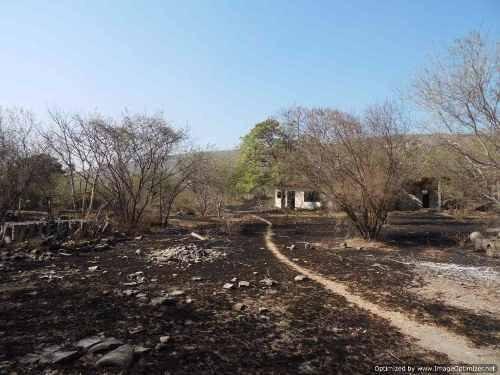 terreno ideal para desarrollo de casas, bodegas, ranchos, fábricas en zacatepec clave tt645